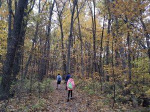 Nerstrand-Big Woods State Park